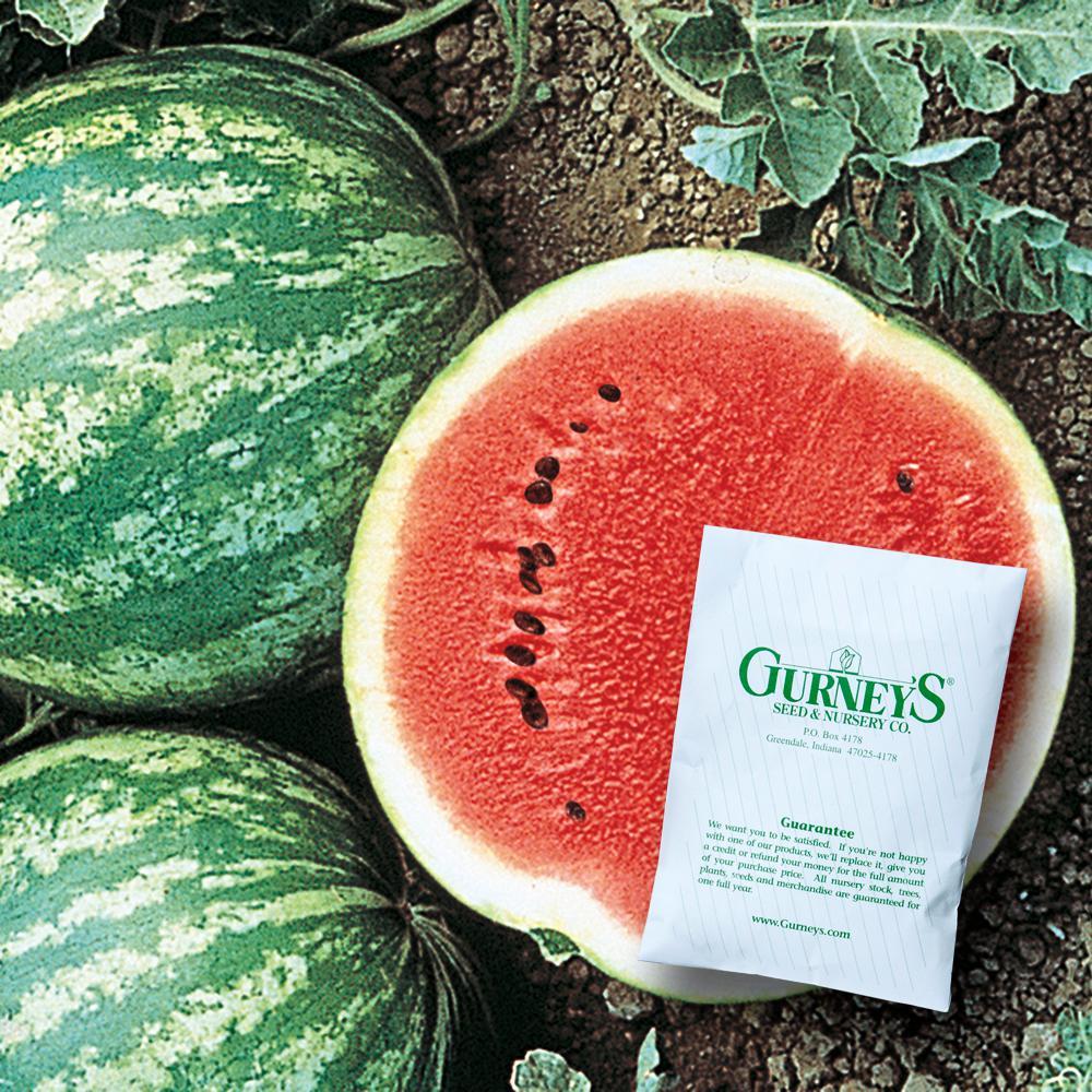 Watermelon Crimson Sweet (30 Seed Packet)