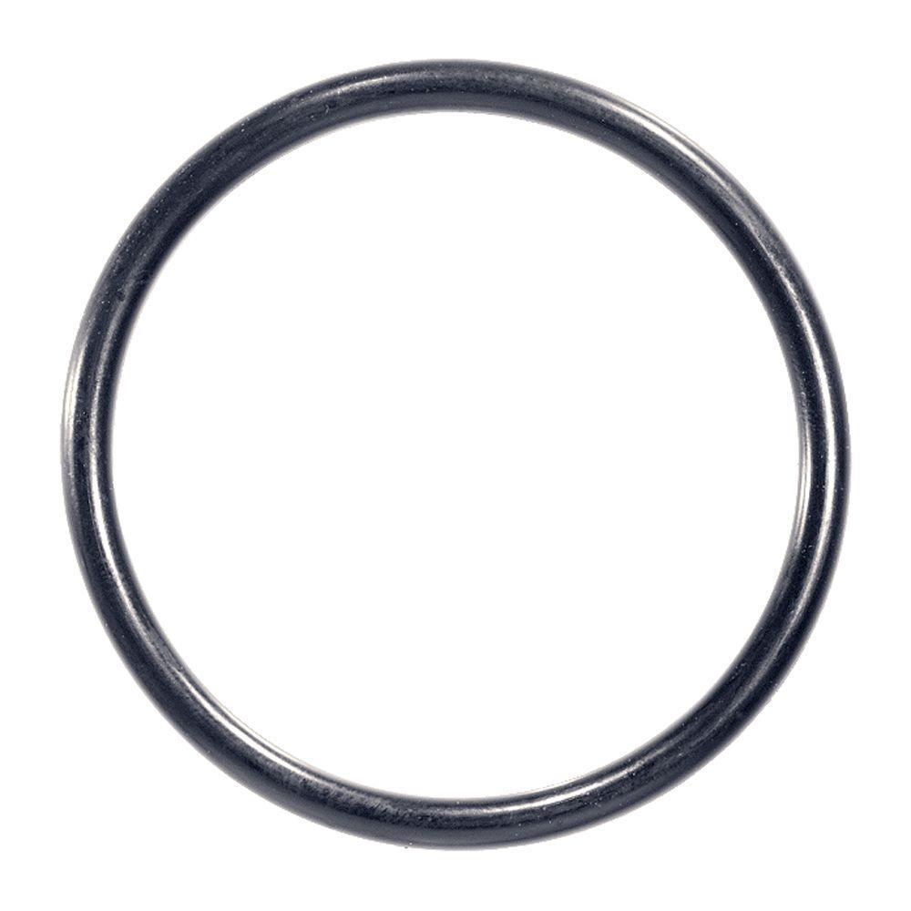 100 O-Ring (Bag of 20)