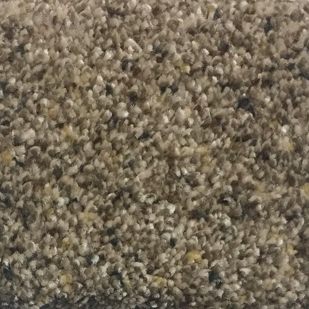 Carpet Sample - Calypso II - Color Apollo Texture 8 in. x 8 in.