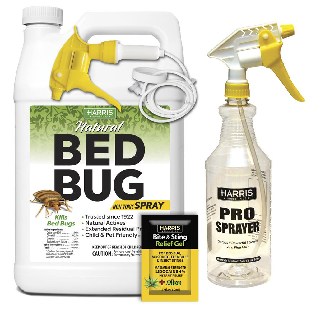 Natural Bed Bug Spray Home Depot