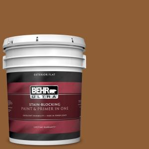 Behr Ultra 5 Gal S250 7 Moroccan Spice Flat Exterior Paint And Primer In One 485305 The Home Depot