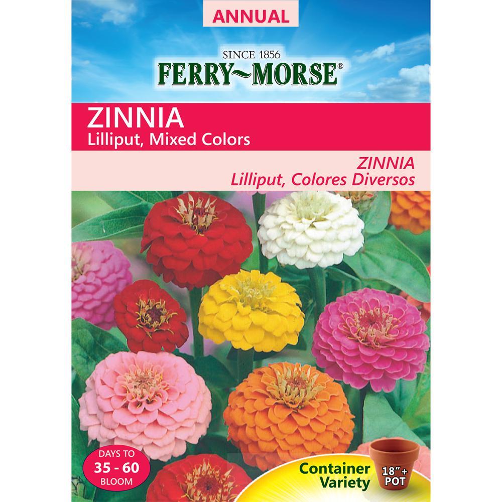 Zinnia Lilliput Mixed Colors Seed