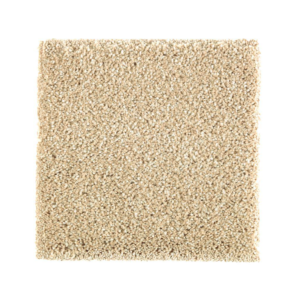 Pet Friendly Rugs Reviews: PetProof Carpet Sample
