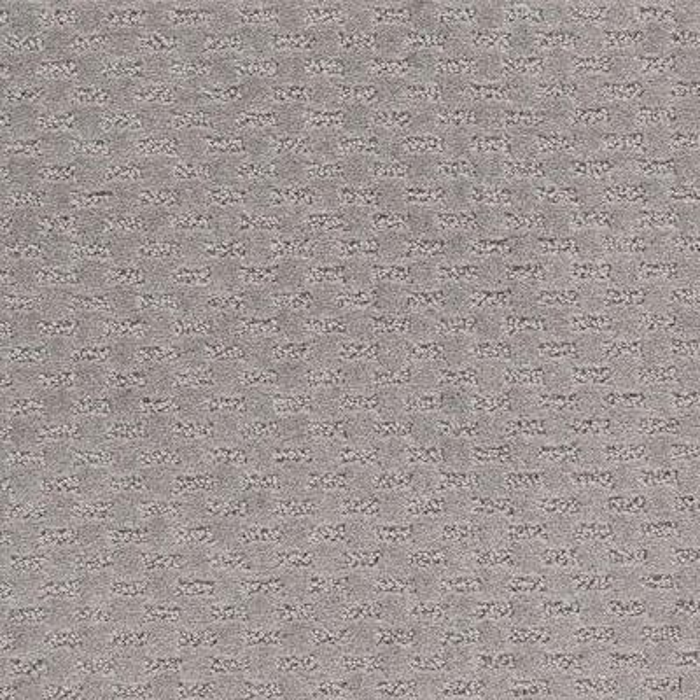 Quiet Reflection - Color Grey Flannel Pattern 12 ft. Carpet
