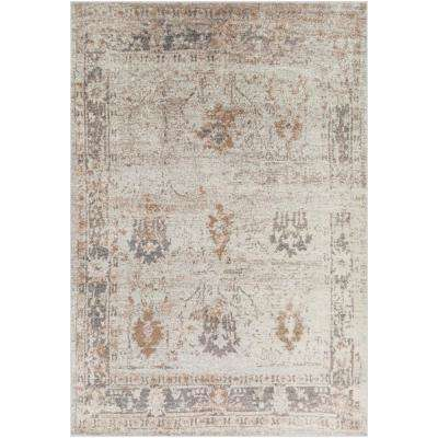 Kathy Grey/Brown 7 ft. 10 in. x 10 ft. 3 in. Distressed Area Rug