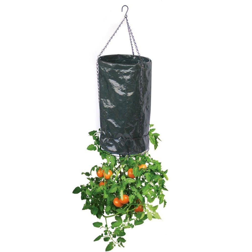 Viagrow Upside Down 11 in. dia. Black Polyethylene Fabric Tomato Planter (3-Pack)