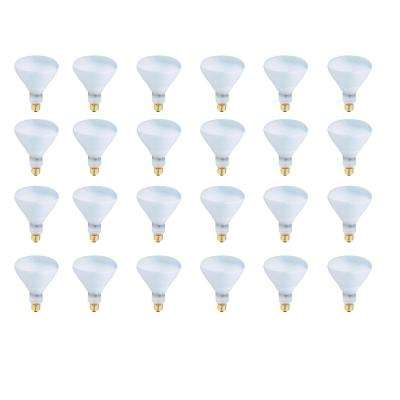400-Watt Soft White (2700K) R40 Dimmable Incandescent Pool and Spa Flood Light Bulb (24-Pack)