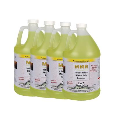 Instant Mold And Mildew Stain Remover 4 Pack