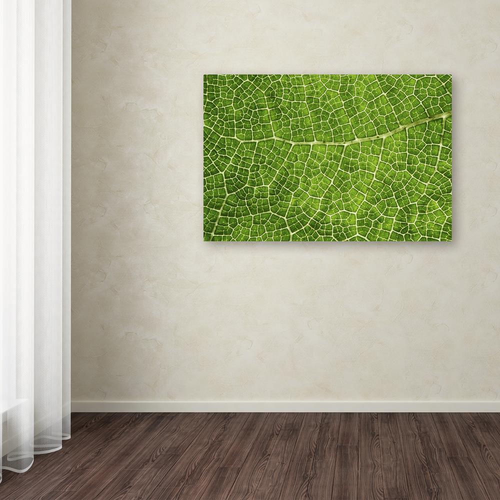 Trademark Fine Art 16 in. x 24 in. ''Green Leaf Texture''