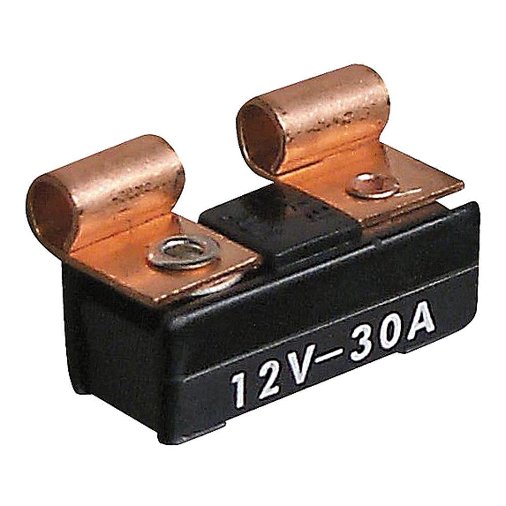 AGC Fuse - 30 Amp