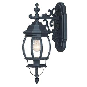 Acclaim Lighting Chateau Collection 1-Light Matte Black Outdoor Wall-Mount Light Fixture by
