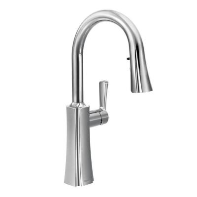 Etch Single-Handle Pull-Down Sprayer Kitchen Faucet with Reflex and Power Clean in Chrome