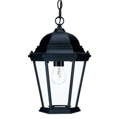 Richmond Collection 1-Light Matte Black Outdoor Hanging Lantern