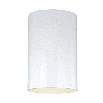 Outdoor Cylinder Collection 1-Light White Outdoor Ceiling Fixture