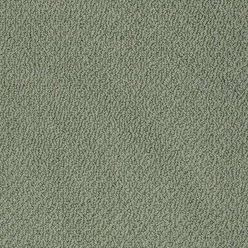 Carpet Sample - Lightbourne - Color Greenhouse Loop 8 in. x 8 in.