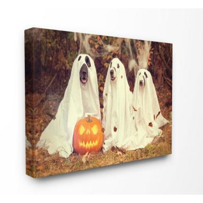 """24 in. x 30 in. """"Vintage Photography Halloween Pumpkin And Ghost Dogs"""" by Daphne Polselli Canvas Wall Art"""