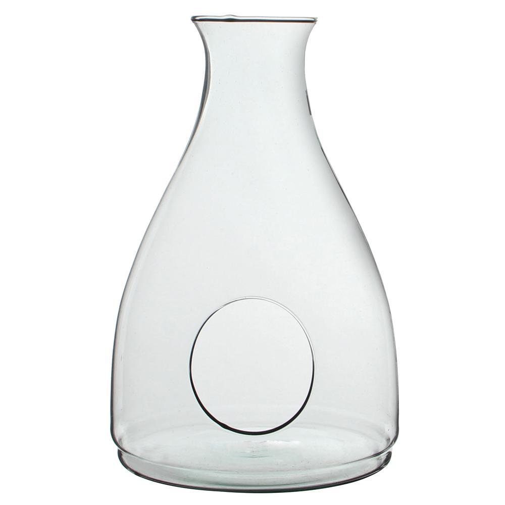 Mika 9.25 in. W x 14 in. H Glass Decanter Terrarium