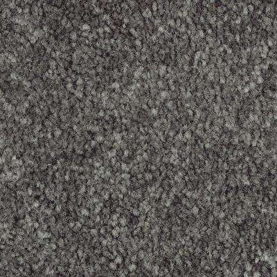 Mason II - Color Aspen Texture 12 ft. Carpet