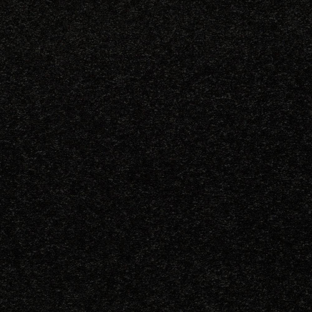 Carpet Sample - Enraptured I - Color Raven Texture 8 in. x 8 in.