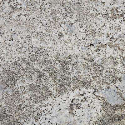 3 in. x 3 in. Granite Countertop Sample in Silver Falls