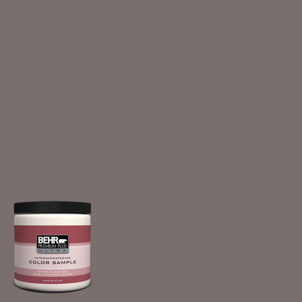 8 oz. #790B-5 Simple Silhouette Interior/Exterior Paint Sample