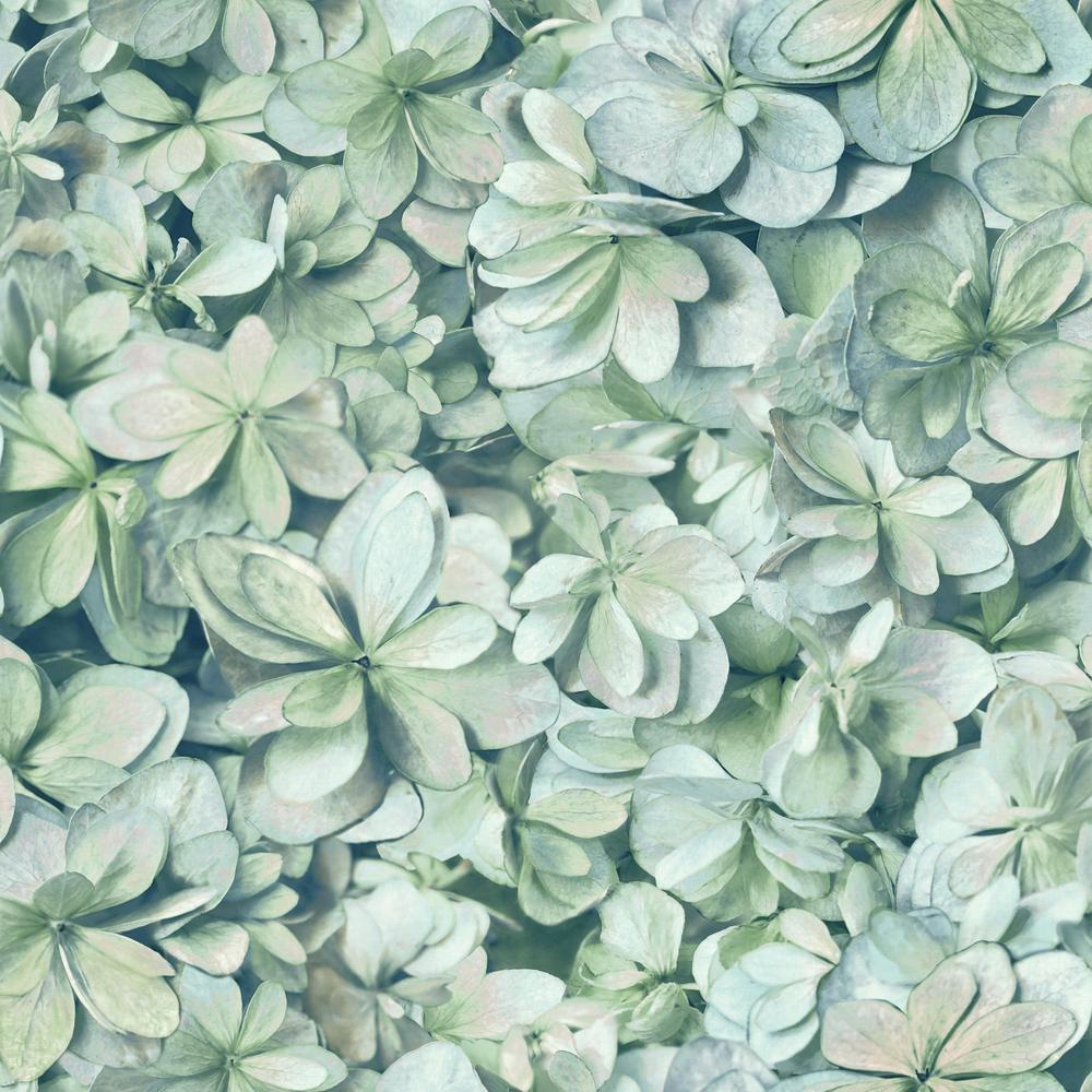 28.29 sq. ft. Hydrangea Peel and Stick Wallpaper