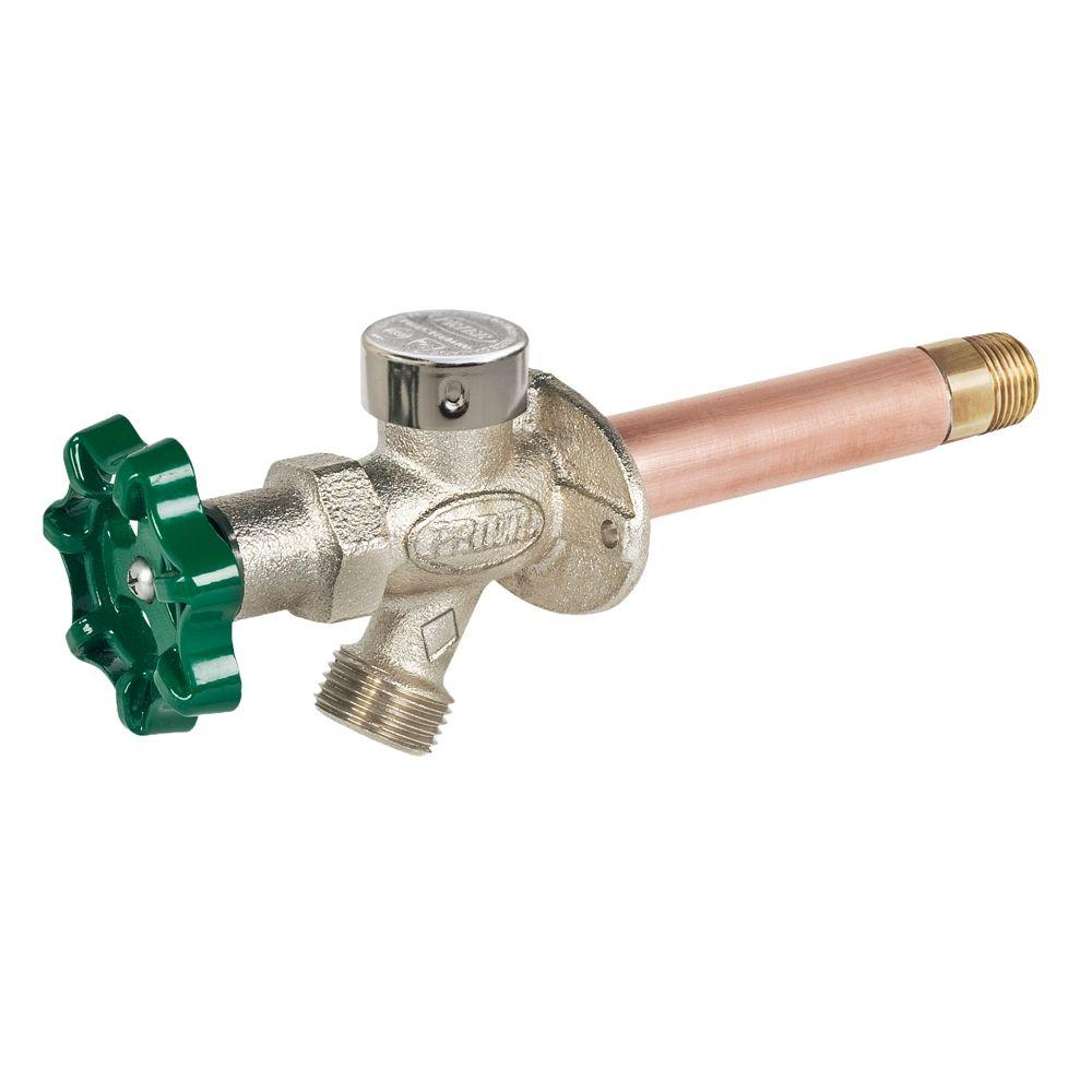 Prier Products 1/2 in. x 14 in. Brass MPT x SWT Heavy Duty Frost ...
