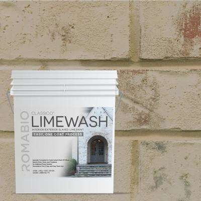Masonry, Brick & Stucco Paint - Exterior Paint - The Home Depot