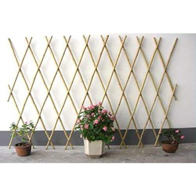 36 in. H Expandable Bamboo Poles Trellis