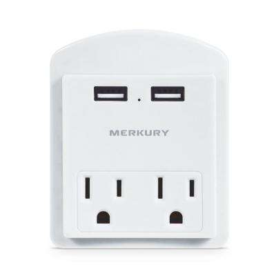 2-Outlet with 2-USB Ports 2.4 Amp Wall Plate with Stand