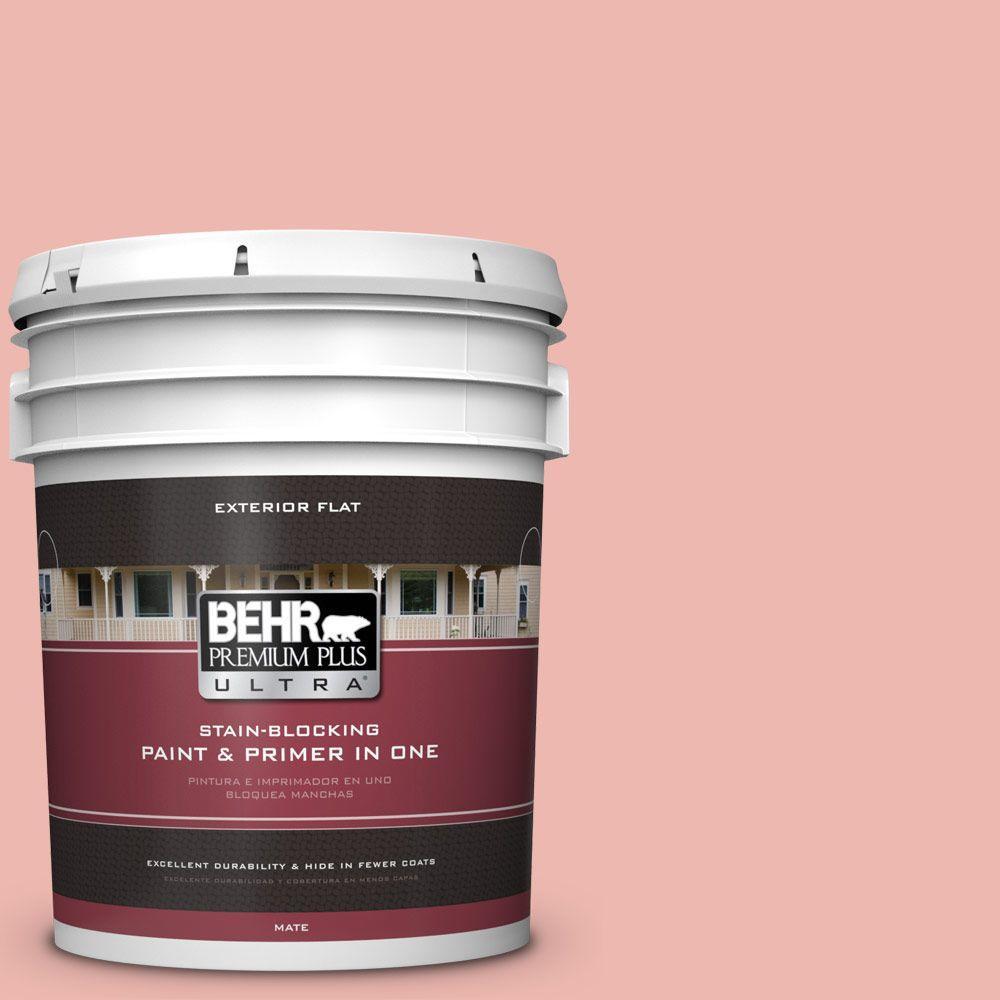 BEHR Premium Plus Ultra 5-gal. #M170-3 Carnation Coral Flat Exterior Paint