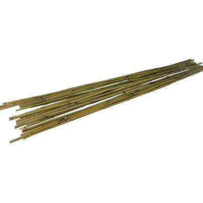 0.5 in. x 5 ft. Natural Color Bamboo Stakes (2-Packs of 10 Each)