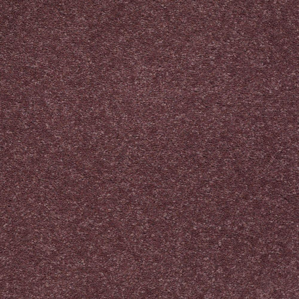 Platinum Plus Enraptured II - Color Thistle 12 ft. Carpet