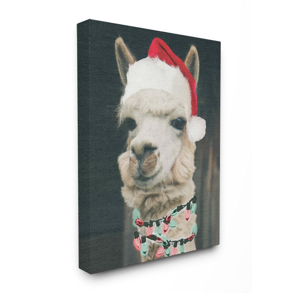 "16 in. x 20 in. ""Christmas Llama"" by Daphne Polselli Printed"