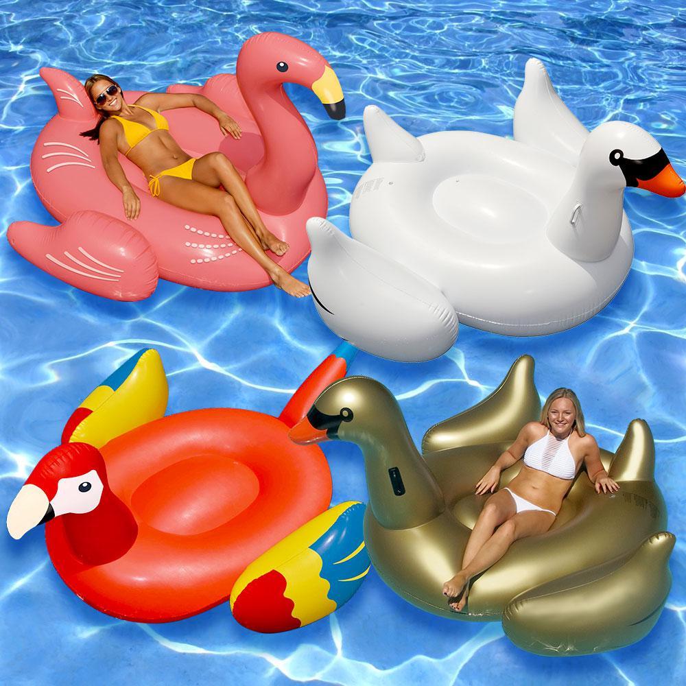 Swimline giant golden goose white swan flamingo and parrot for Pack swimming