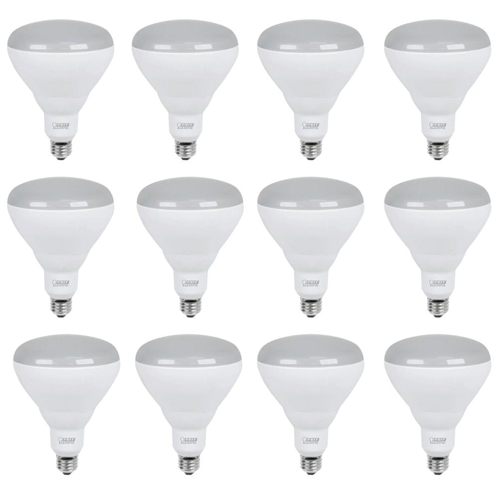 Feit Electric 40w Equivalent Soft White 2700k T10: Feit Electric 65W Equivalent Soft White (2700K) BR40