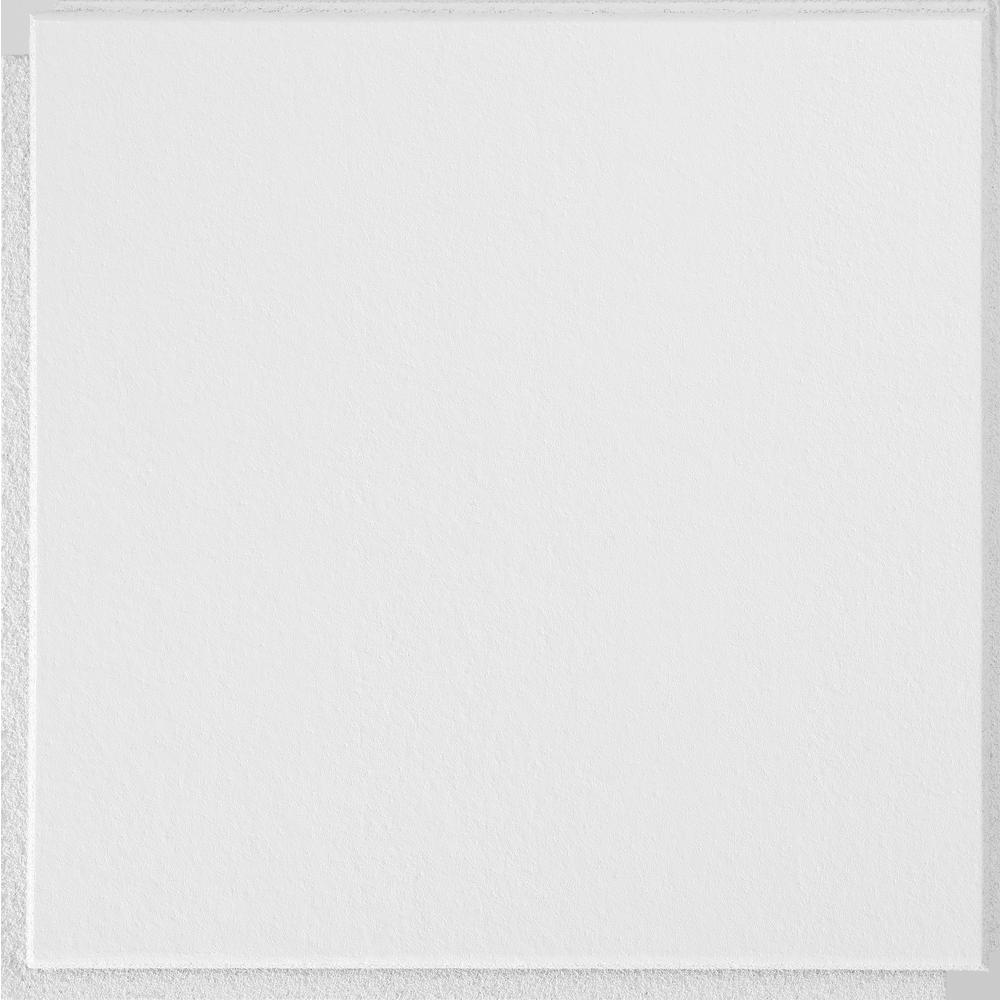 Armstrong Washable White 12 In X 12 In X 12 In Ceiling Tiles 40