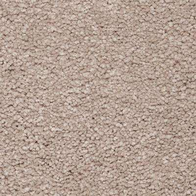 Carpet Sample - Castle II - Color Phoebe Textured 8 in. x 8 in.