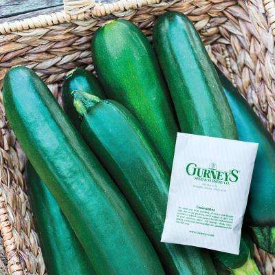 Squash Summer Improved Zucchini Hybrid (20 Seed Packet)