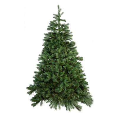 3 ft. to 4 ft. Freshly Cut Grand Fir Live Christmas Tree (Real, Natural, Oregon-Grown)
