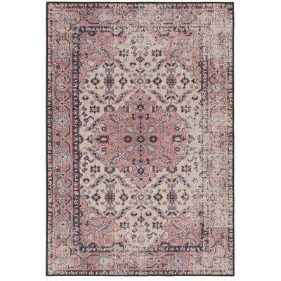 Anatolia Distressed Transitional Pink 5 ft. x 7 ft. Area Rug