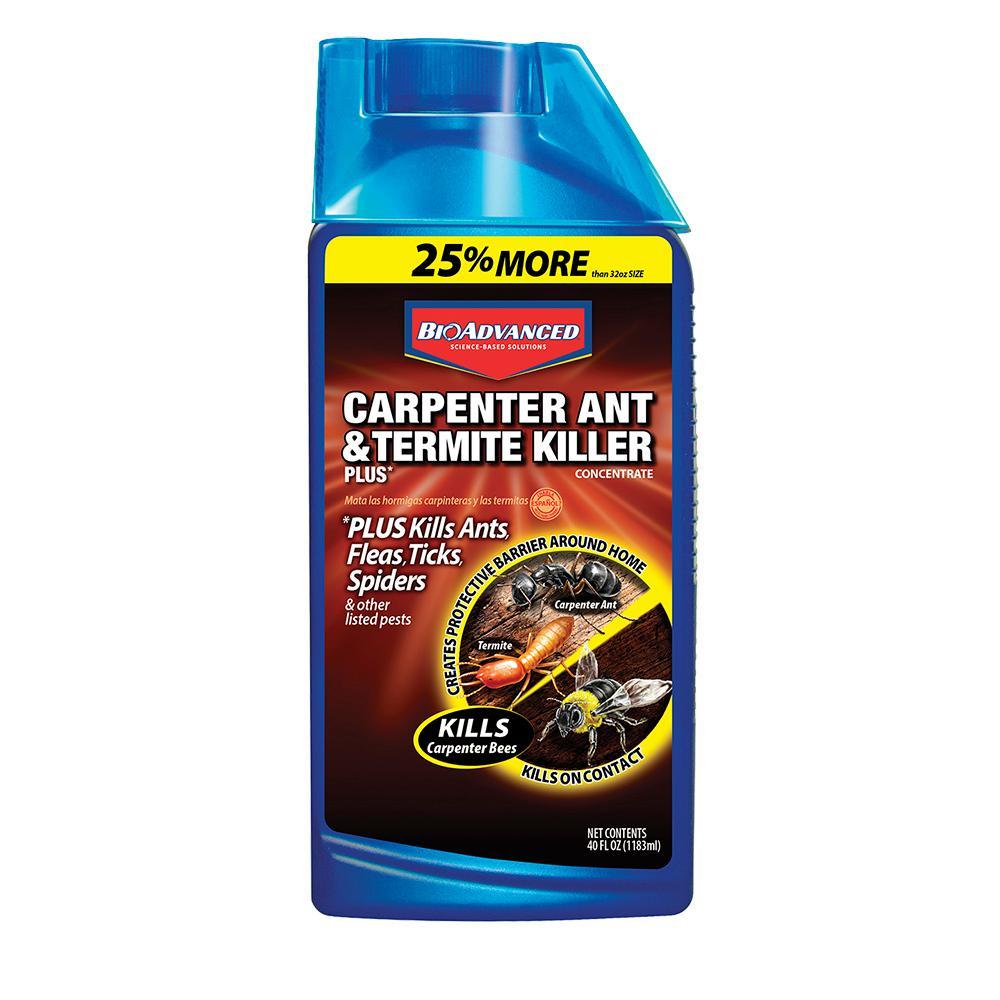 Bioadvanced 40 Oz Concentrate Carpenter Ant And Termite Killer Plus 700310 The Home Depot