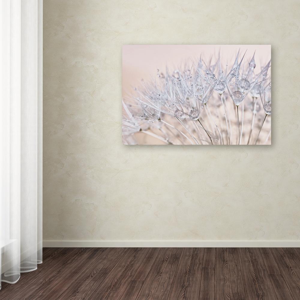 Trademark Fine Art 16 in. x 24 in. ''Dandelion Dew II''