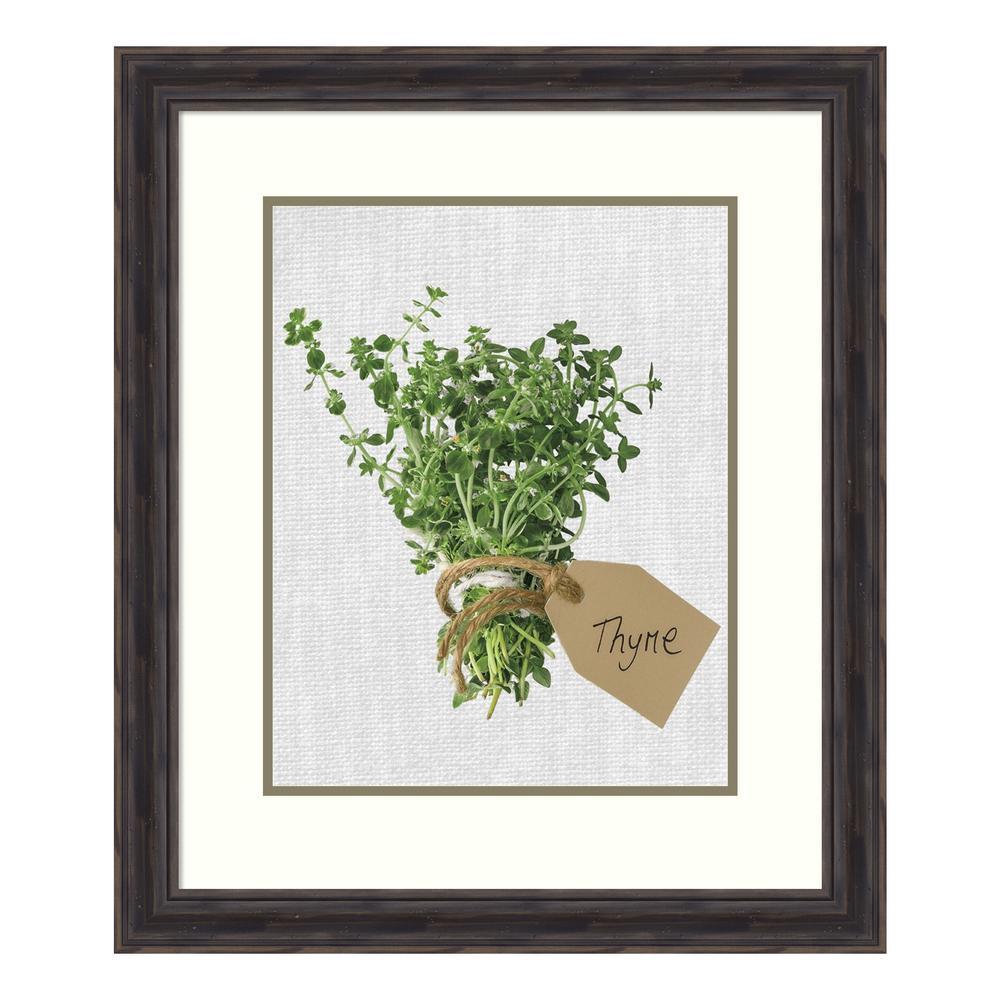 """Thyme"" by Assaf Frank Framed Wall Art"