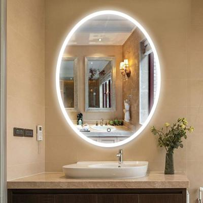 23.5 in. W x 35.5 in. H Framed Oval LED Light Bathroom Vanity Mirror in Clear