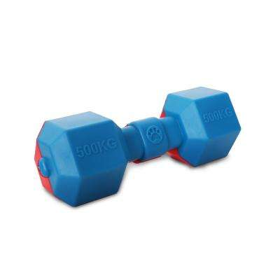Red and Blue Dumbbell Durable Water Floating Chew and Fetch Dog Toy