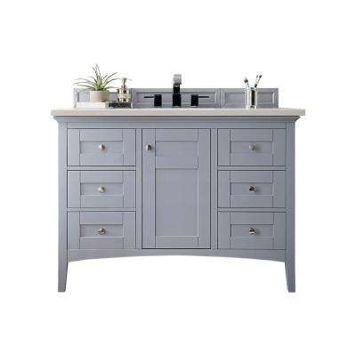 Palisades 48 in. W Single Vanity in Silver Gray with Quartz Vanity Top in Snow White with White Basin