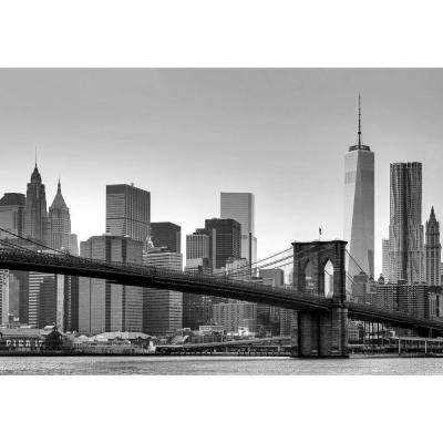 144 in. H x 100 in. W New York Wall Mural