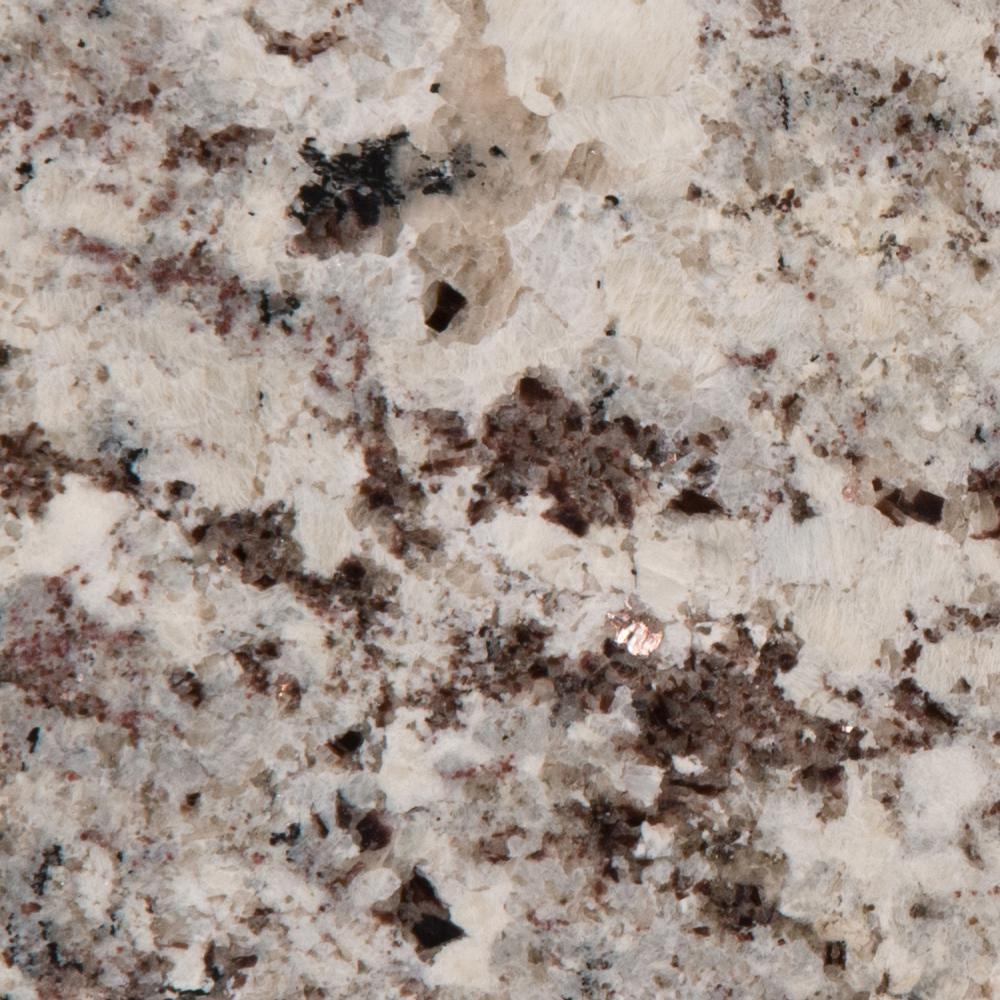Stonemark 3 in  x 3 in  Granite Countertop Sample in Alaska White