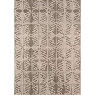 Baja Taupe 8 ft. x 11 ft. Indoor/Outdoor Area Rug